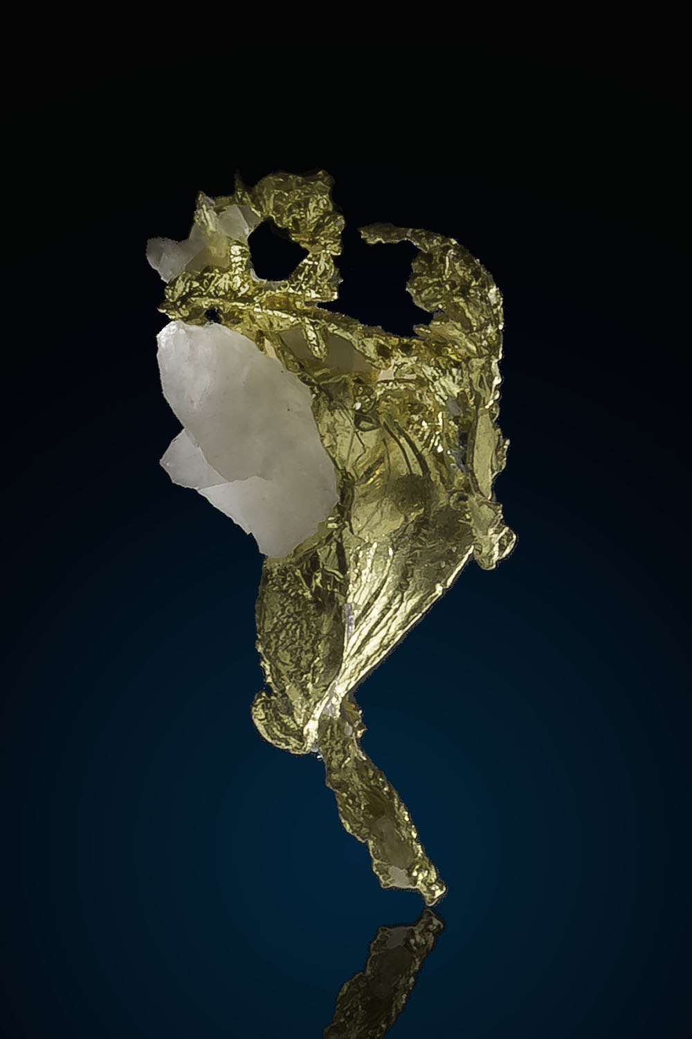 Twisted and Striated Gold Crystal - Eagles Nest Gold Mine